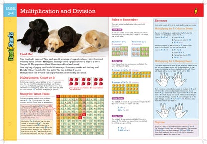 Multiplication and Division FlashCharts