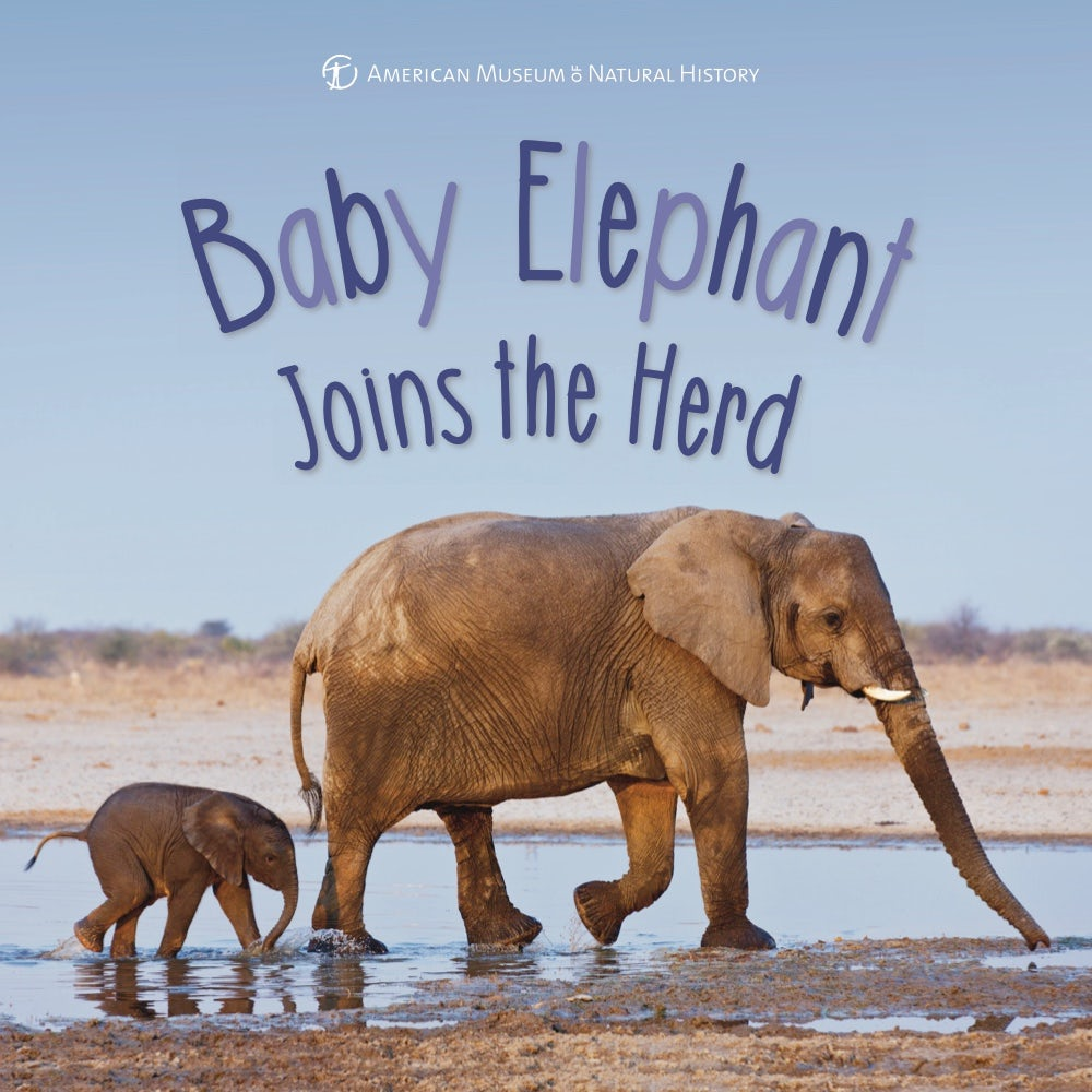 Elephant Trunk Tusks Ears  Kids Facts & Picture Book (Kids facts and picture books)