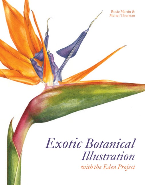 Exotic Botanical Illustration